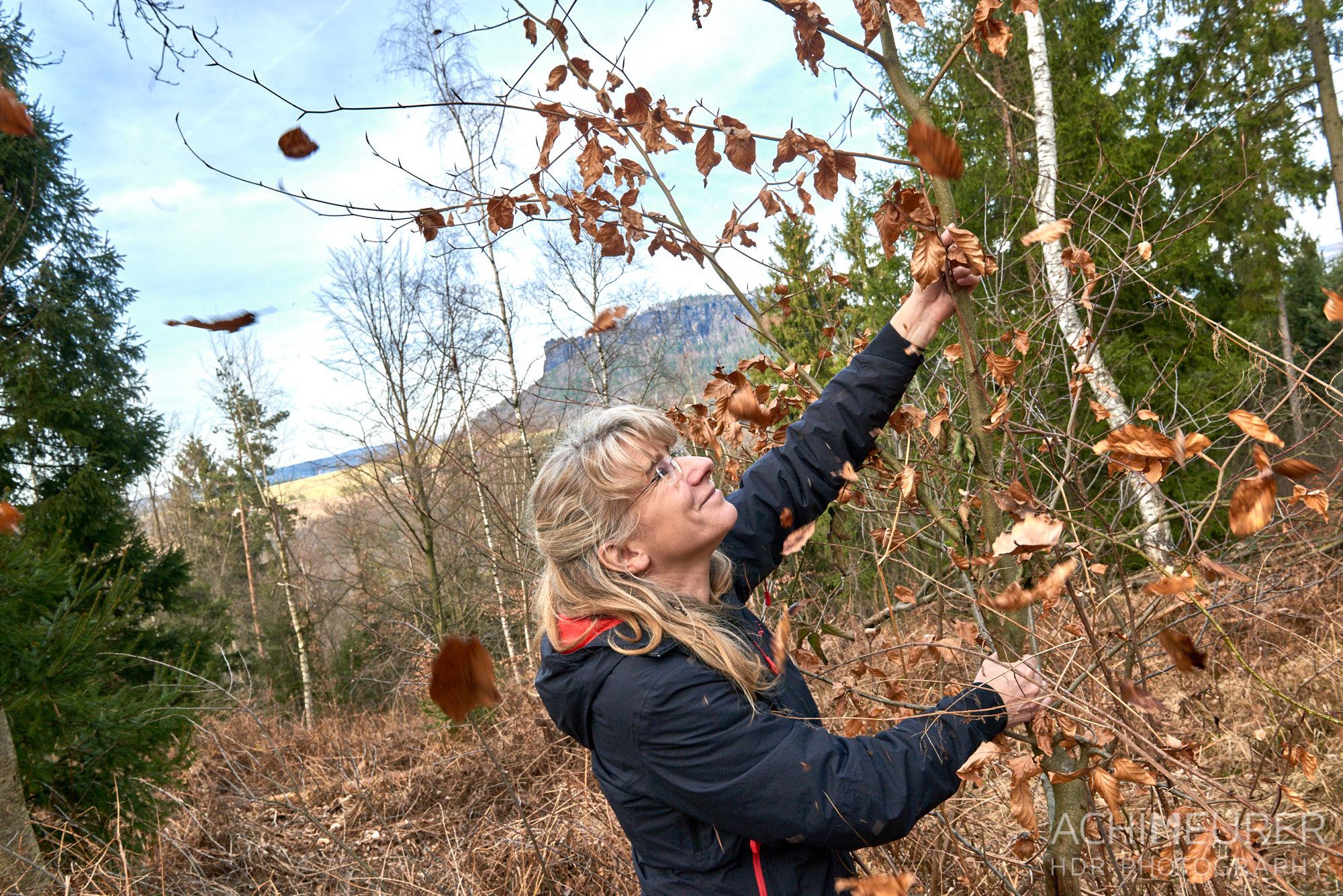 Aussicht im Winter ohne Blätter an den Bäumen, Sächsische Schweiz by AchimMeurer.com.