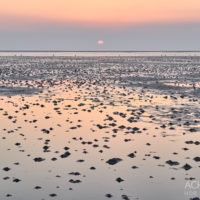 Sankt-Peter-Ording-Winter-2018_1667 by AchimMeurer.com.