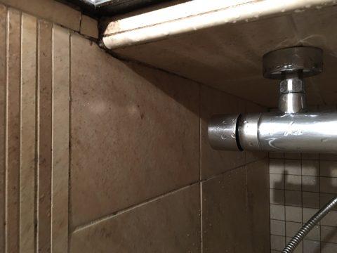 Schimmel an den Fliesen einer Dusche